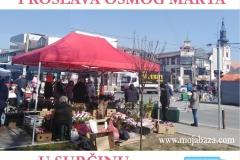 11proslava-osmi-mart-2021-surcin-centar-opstina-vesti-novosti-oraznik-dan-zena-moja-baza-10