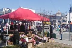 proslava-osmi-mart-2021-surcin-centar-opstina-vesti-novosti-oraznik-dan-zena-moja-baza-10