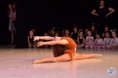 baletski-studio-step-logo-mojabaza-skola-baleta-skolica-devojcice-zemun-altina-batajnica-zemunpolje-trening-balerina-baletanke-casovi3
