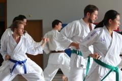 karate-fotos-nove-olimpijske-discipline-tokio-2020-sports-news-mojabaza