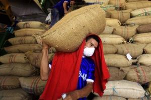 kafa-mojabaza-svet-bez-globalno-zagrevanje-klimatske-promene-botanika-zanimljivo