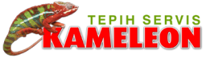 Kameleon _logo