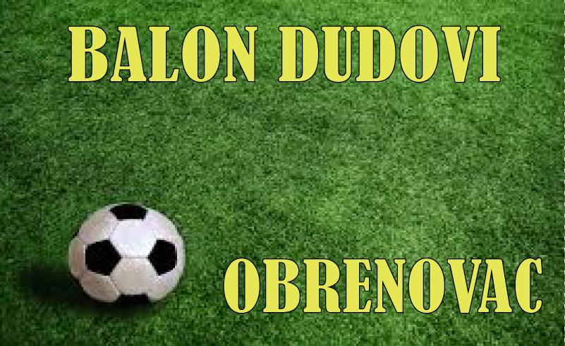 balon-dudovi-sport-obrenovac-fudbal-futsal-trening-decjirodjendan-proslave-grupni-individualni-skolica-posavskipartizani-mojabaza